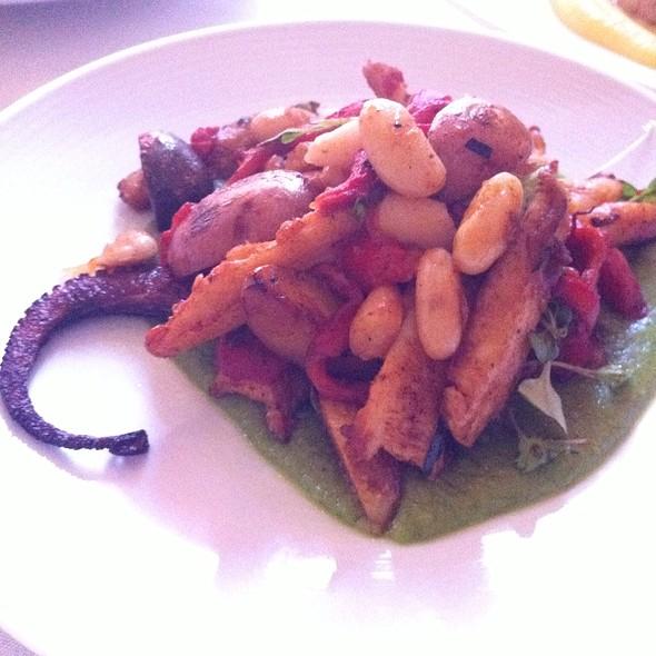 Grilled Octopus - Paradiso - Philadelphia, Philadelphia, PA