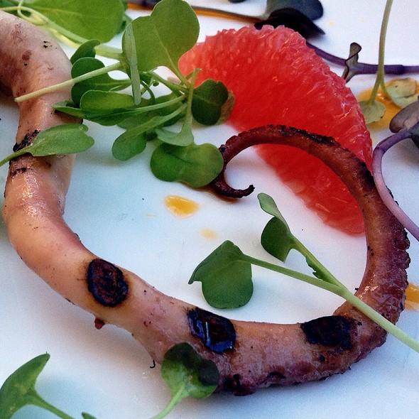 Charred Octopus @ Pelagia Trattoria Tampa Restaurant
