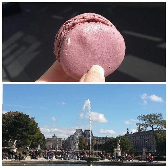 Violet Macaron @ Ladurée Paris