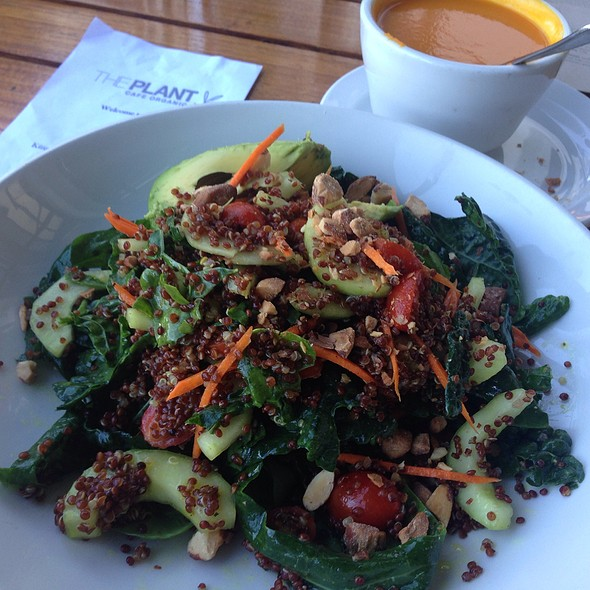Dino Kale Salad @ The Plant Cafe Organic
