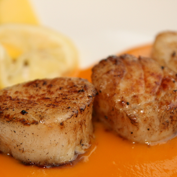 Grilled Sea Scallops in Mango Sauce - Ibiza Tapas Restaurant & Wine Bar, Pittsburgh, PA