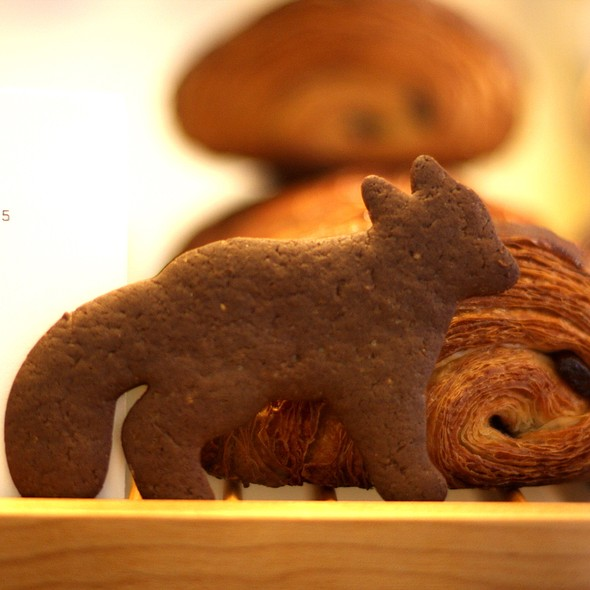 Gingerbread Fox @ Vergennes Laundry