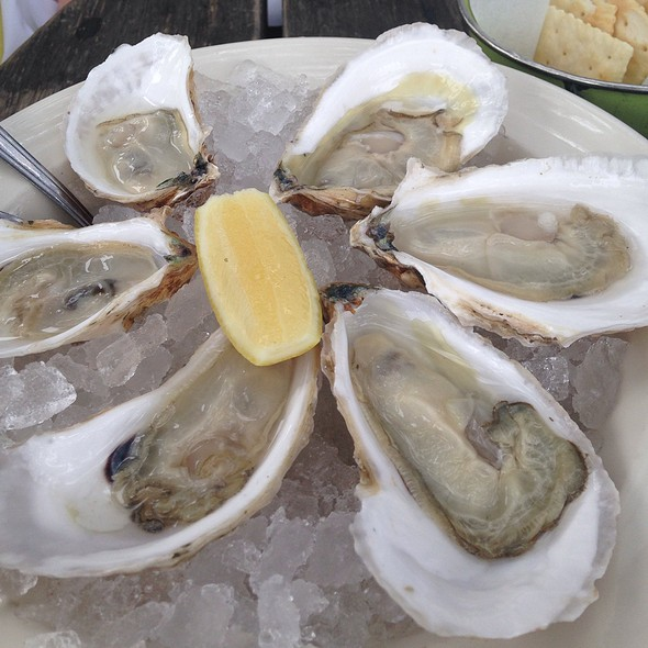 Katama Bay Oysters - Perla's Seafood and Oyster Bar, Austin, TX