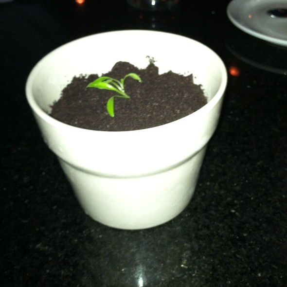Dirt Cup @ Eating House