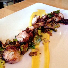 Grilled Octopus - Food Wine and Co., Bethesda, MD