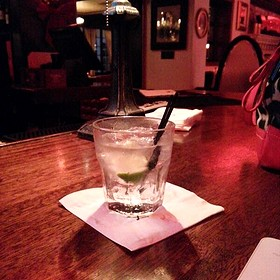 Grey Goose And Tonic