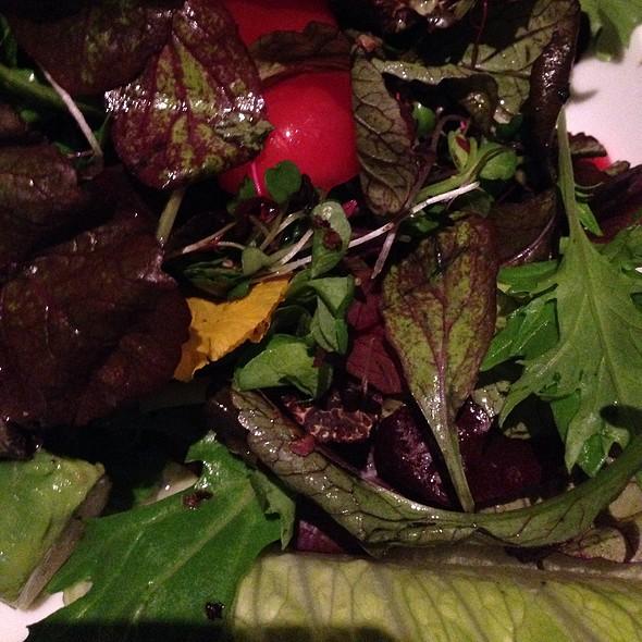 Mixed Salad with Avocado