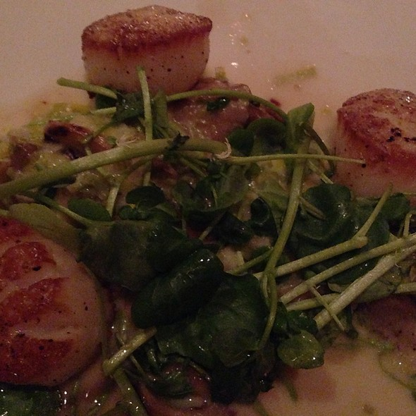 Scallops - The Cellars, Virginia Beach, VA
