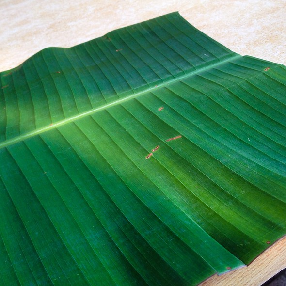 Empty Banana Leaf
