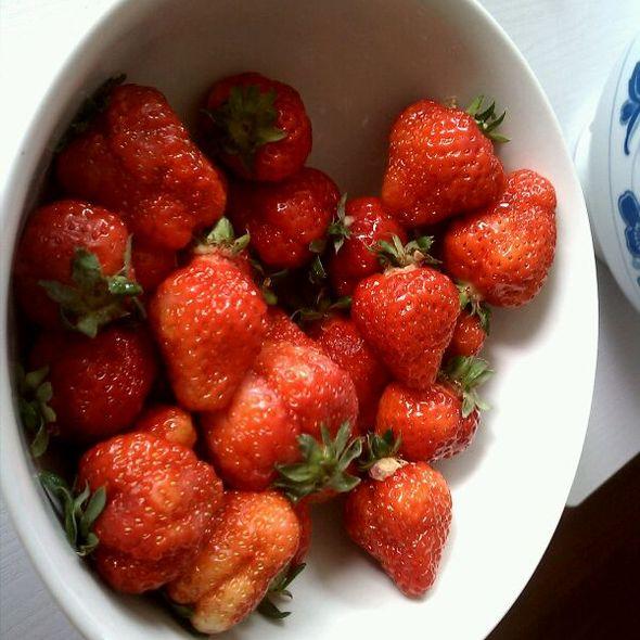 草莓 @ Song He Lou