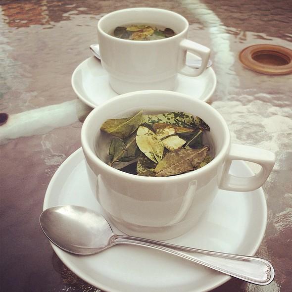 coca leaf tea @ The Garden House