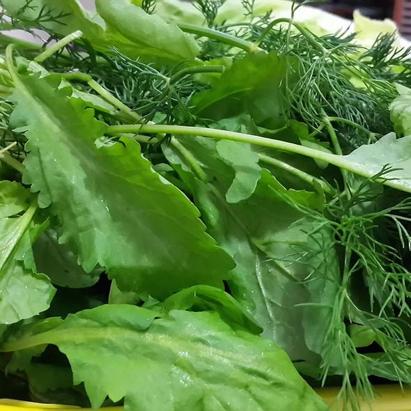 green salad @ My home Ankara