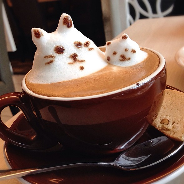 Signature Cappuccino 3D @ Coffee Chemistry Signature