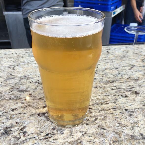 Liquid Sun Light Lager - Rock Bottom Brewery Restaurant - Milwaukee, Milwaukee, WI