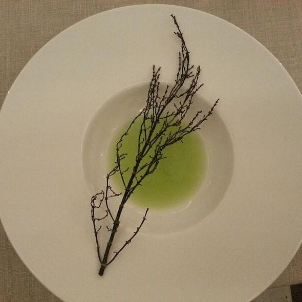 Salicornia & Gin Fizz al Sedano