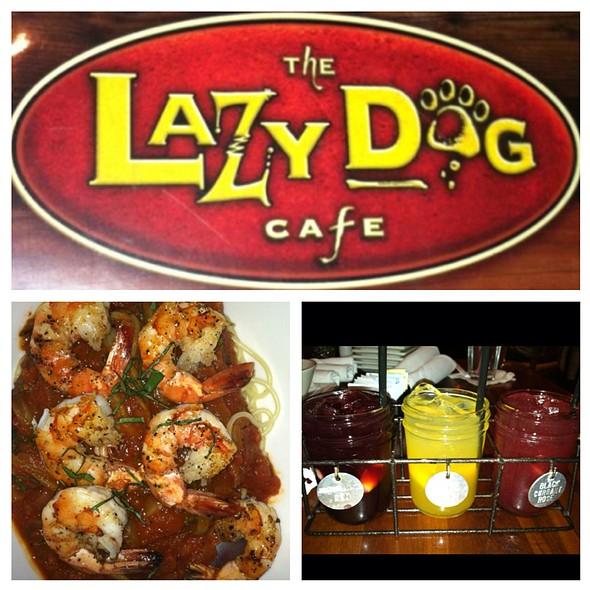 Lazy Dog Cafe Menu Torrance Ca
