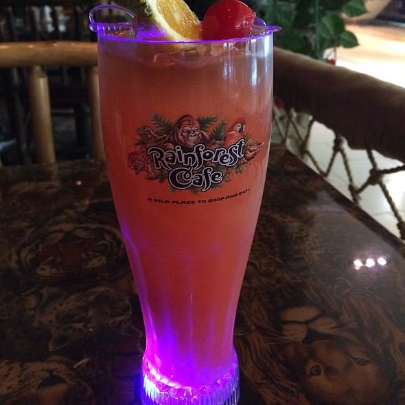 Mai Tai @ Rainforest Cafe