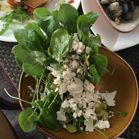Arugula & Fava Bean Salad - Donato Enoteca, Redwood City, CA