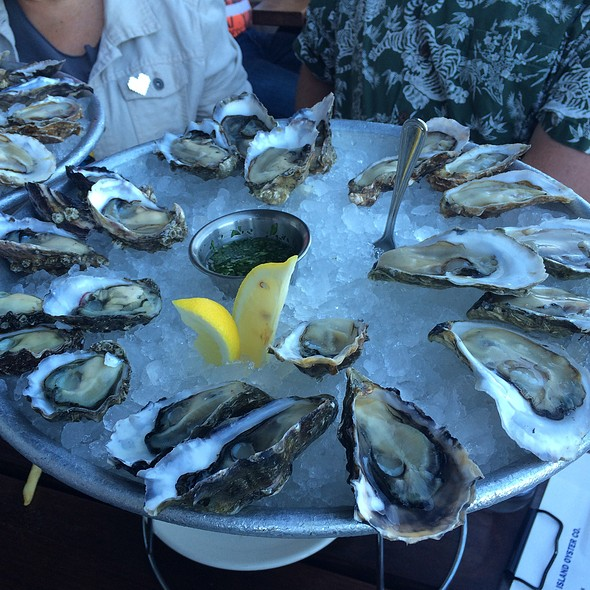 36 Oysters from Hog Island? Don't mind if I dooooo!  @ Hog Island Oyster Co.
