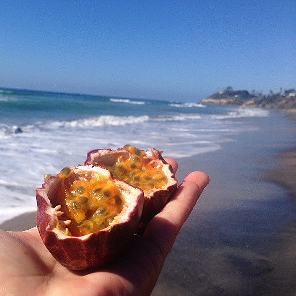 passionfruit @ Cardiff State Beach