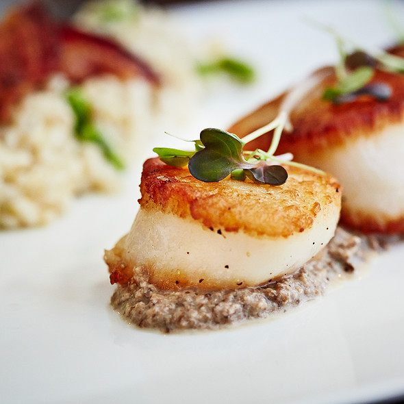 Scallops - South Water Kitchen, Chicago, IL