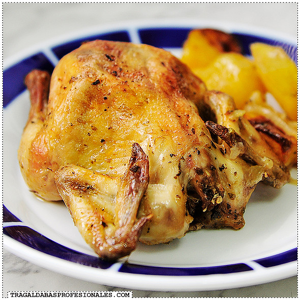 Roasted coquelet