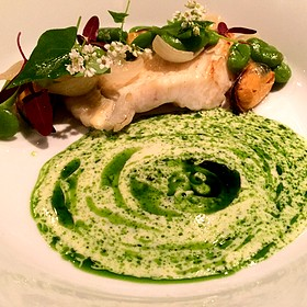 Spanish Turbot with Basil, Mussels, Fava Beans, Spring Onions, Marrow, and Seabeans