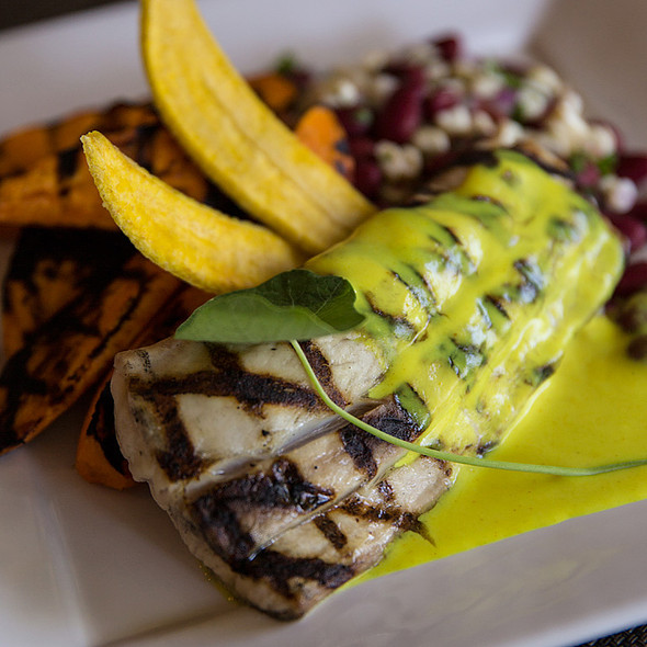 Grilled Mahi Mahi - Glenmorgan Bar & Grill at the Radnor Hotel, St. Davids, PA