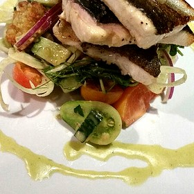 Rainbow Trout Special