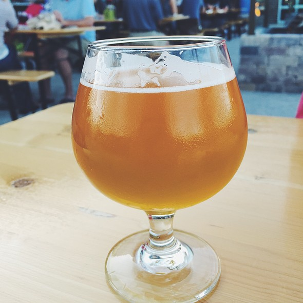 Jolly Pumpkin Oro De Calabeze @ Brown Iron Brewhouse