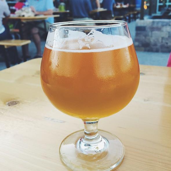 Jolly Pumpkin Oro De Calabeze @ Brown Iron Brewhouse