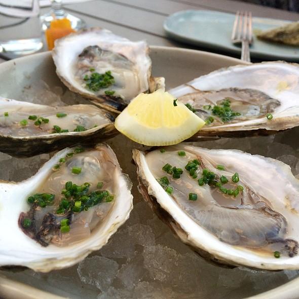 Pemaquid Oysters  @ Loyal Nine