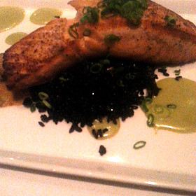 Salmon - Michael's On East, Sarasota, FL