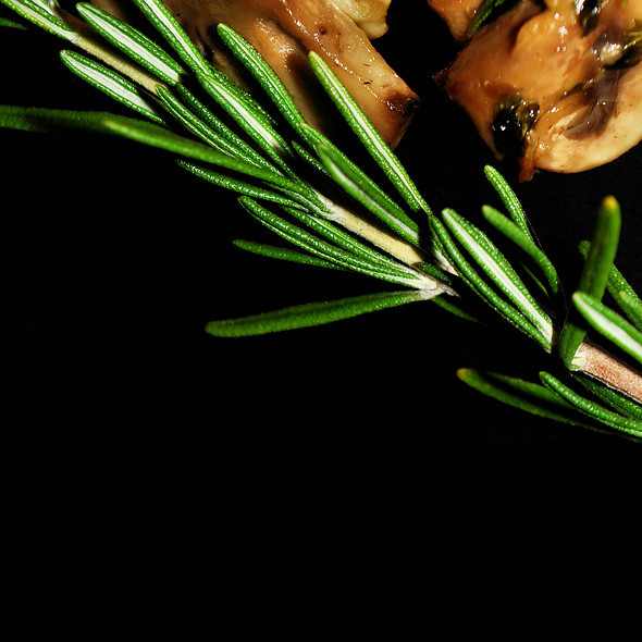 Fresh Rosemary & Mushrooms @ Home