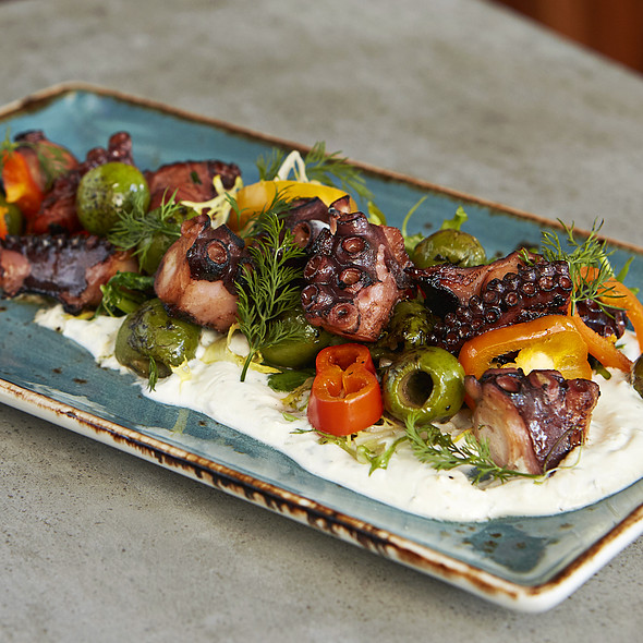 Charred octopus pickled peppers, roasted olives, garlic-dill labneh  @ The Social Club at Surfcomber Hotel