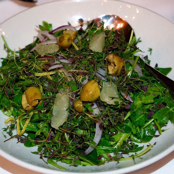 Lebanese thyme salad – herbs, Lebanese arugula, parsley, lemon, green olive, onion - ilili