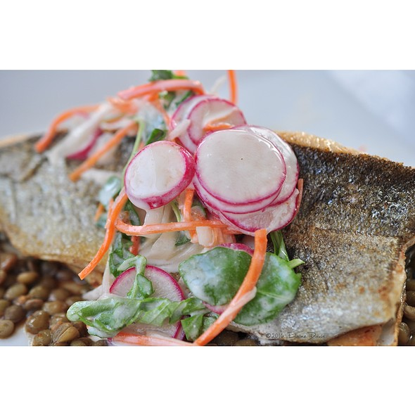 Seared Trout With Lentils - Julian, Kansas City, MO