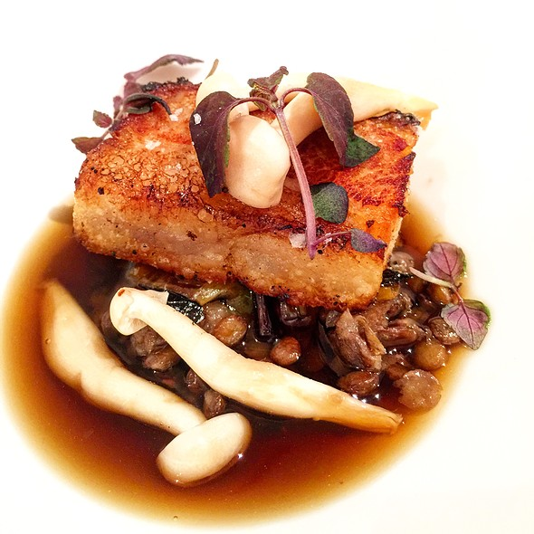 Crispy Pork Belly, Lentils Ragu, Charred Leek, Pickled Mushroom, Mushroom Consomme - Tosca Ristorante, Washington, DC