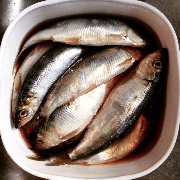Herring In Brine