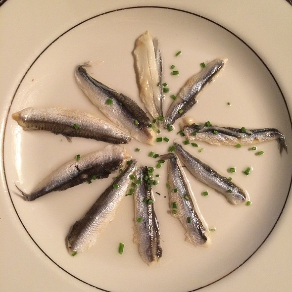 Anchovies - Under The Moon Cafe, Bordentown, NJ