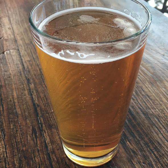 Lost Coast - Honey Blond Beer