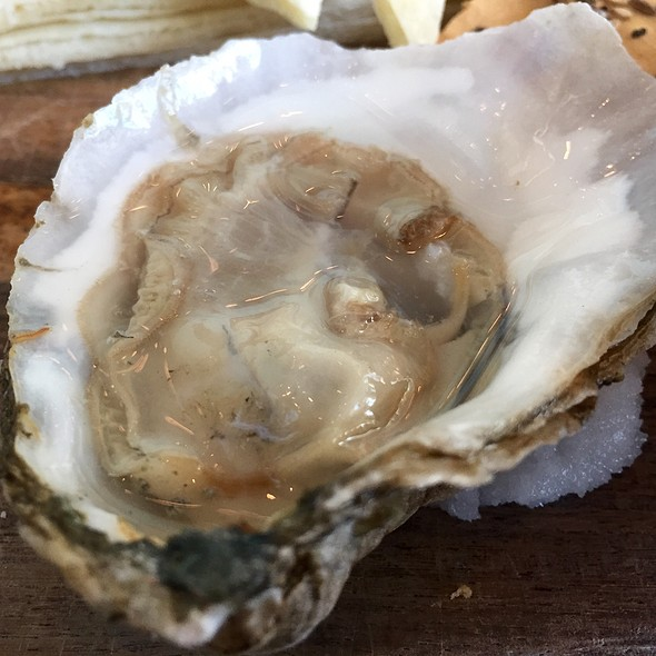 Belon Oyster On The Half Shell - Halcyon, Flavors from the Earth, Charlotte, NC