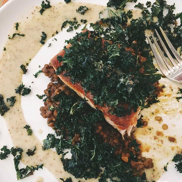 Salmon @ Social Kitchen & Bar