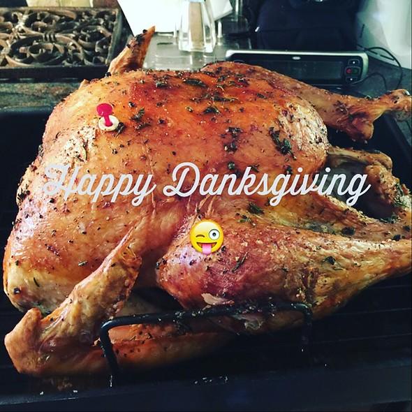 Medicated Turkey @ Hizzay