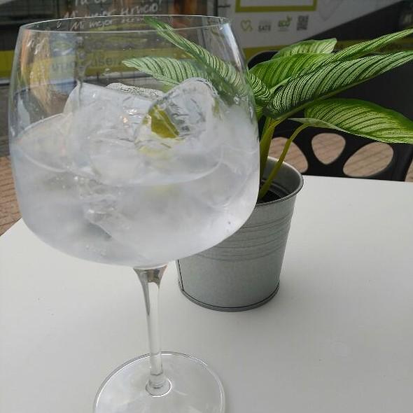 Gin & Tonic @ Bar Tree - Burgos