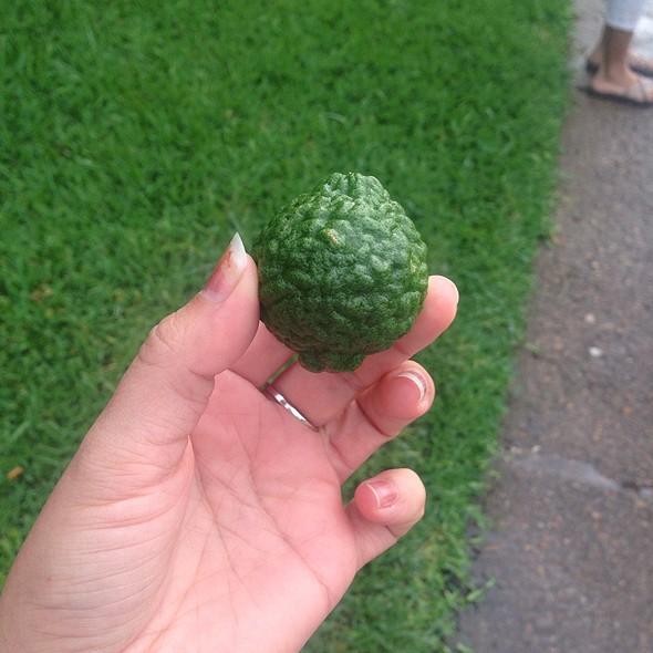 Kaffir Lime @ Hay Merchant