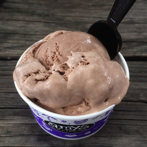 Amy's Chocolate Ice Cream