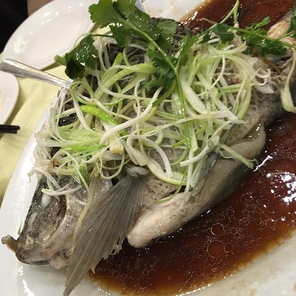 Steamed Tilapia @ Sandy La Chinese Restaurant