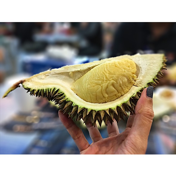 Durian @ Durian SS2