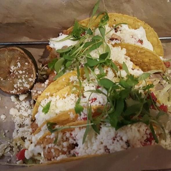 Dogfish Shrimp Tacos